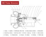 Ölplattform-Pumpen-Schlamm-Schleuderpumpe-Auftrag-Auftrag Sandmaster Pumpe