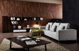 Sofá elegante moderno L forma da tela da sala de visitas do projeto novo (HC8102)