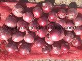 수출 새로운 작물 좋은 품질 경쟁적인 3-5cm 빨간 양파