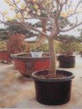 反紫外線52.5L耐久のプラスチック植木鉢(13.85ガロンボリューム)
