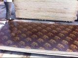 Prix de contre-plaqué, faisceau de Popar, colle de WBP, Brown et noir faits face par film, 9-21mm