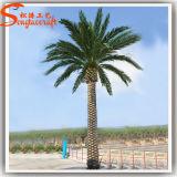 도매 정원 훈장 인공적인 플랜트 대추 야자 나무