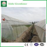 Serra di plastica di Quingzhou con il sistema di raffreddamento