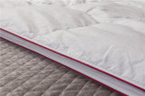 Redin Satin Piping Gusset Design Quilt Comfortable edredon hypoallergénique