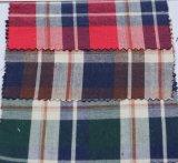 O algodão clássico verific o laço da tela