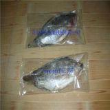 自動フリーズされたシーフード、魚は包む機械証明されるセリウムが付いている流れる