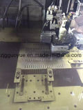 Machine en nylon de production de la courroie PA66GF25