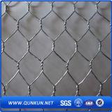 Ячеистая сеть PVC высокого качества Coated шестиугольная