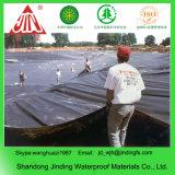 Cultivo de Camarones HDPE Pond Liner