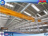 Gruppo di lavoro prefabbricato industriale della struttura d'acciaio della costruzione (FLM-011)