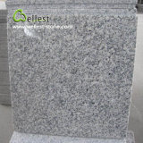 Mattonelle Polished delle mattonelle di pavimento del granito G603