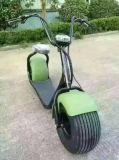 Motorino elettrico 60V della gomma grassa delle due sedi
