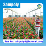 Invernadero agrícola de la película de la fábrica profesional para la flor
