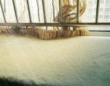 Moquette del pavimento della stuoia di portello delle coperte di zona delle lane della copia di buona qualità