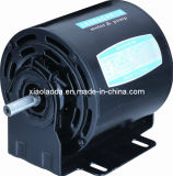 Steel Plate를 가진 NEMA48 56frame Three Phase Electric Motors/AC Motors