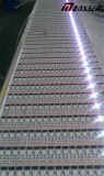 Indicatore luminoso di striscia di DC24V SMD5050 RGBW /Rgbww LED Flexibel