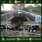 Afgeworpen de Landbouw van de Koe van de Structuur van het staal