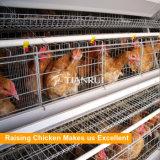 Gaiola quente da galinha da camada da exploração avícola da galvanização