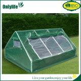 Onlylife PVC折りたたみ屋外のプラントはFoldable温室を育てる