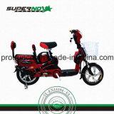 Motorino elettrico per gli adulti con Braket anteriore
