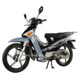 Welp Jc110-19 van de Motorfiets van Jincheng de Model
