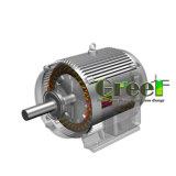 Низкий генератор постоянного магнита Rpm для турбины ветротурбины и воды
