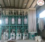 Planta automática do moinho da grão da máquina do moinho de farinha do trigo do aço 50tpd