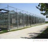 Serra di vetro facilmente montata di Venlo per il servizio dell'Ue con migliore qualità