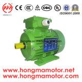 Motore asincrono asincrono del motore del motore a corrente alternata del motore elettrico del GOST Y2