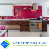 Vidrio y muebles blancos de la cabina de cocina del final del color (ZY 1188) del genio de la chapa