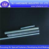Amorçage Rod de la qualité DIN975