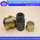 Fiche en laiton de laiton d'ajustage de précision de pipe de constructeur professionnel