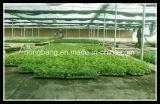 حديقة أرض تغذية [بّ] [ويد كنترول] حصيرة