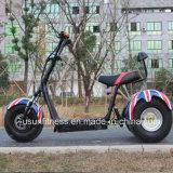 motorino elettrico di 1000W 3wheels con Ce