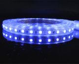 5050 RGB einzelne Zeile Streifen der Hochspannung-LED für Innen-/im Freiendekoration