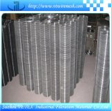 Stainless Steel Welded Mesh with SGS Report Used in Building