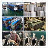Transformadores montados Pólo imergidos da distribuição da corrente eléctrica da série S13 petróleo trifásico