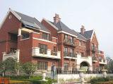 Óxido de hierro Lr110 rojo para la construcción y los ladrillos, y azulejos