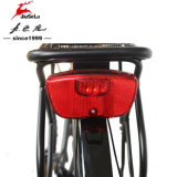 Vélos électriques 36V de ville en aluminium neuve de la batterie au lithium 700c (JSL033G)