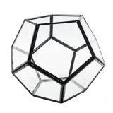 De moderne Bol die van het Glas Terrarium Ornaments&#160 hangen; Ontwerp