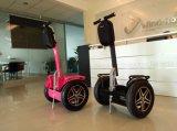 2개의 바퀴 전기 서 있는 스쿠터를 가진 전기 2륜 전차 스쿠터