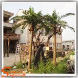 工場価格の卸売の庭の装飾のための人工的なヤシの木