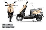 ATV E 자전거