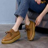 Späteste Plattform-Schuhe, Dame Leather Footwear, Form-Turnschuh, Art Nr.: Beiläufiges Shoes-PS001