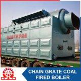 Chaudière à vapeur allumée par charbon de tube d'incendie horizontal et d'eau