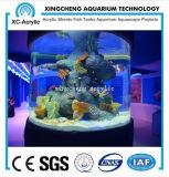 Tanque de peixes usado com a folha acrílica personalizada para a decoração