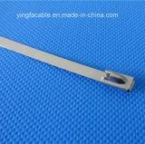 4.6mmx550mm Edelstahl-Reißverschluss-Kabelbinder-Verschluss-Gleichheit-Verpackung