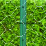 六角形ワイヤー網(電流を通される電気)