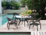 屋外の家具(LN-1031)のためのセットを食事する庭またはテラスの藤