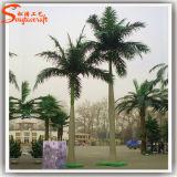 広州の卸し売りプラスチックヤシの木のガラス繊維の人工的なココヤシの木の木